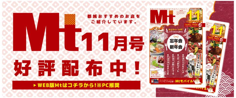 main-img-11-01